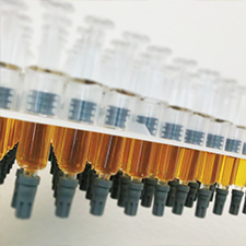 Hash Oil Cartridge Refill