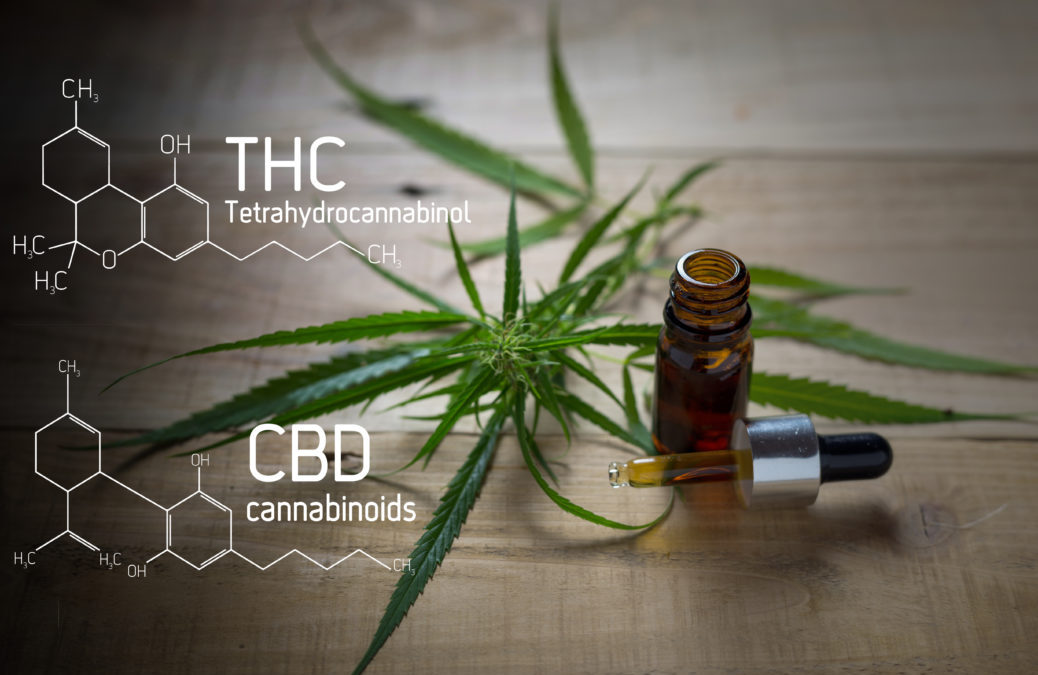 Study Suggests Medicinal Benefits of THC May Outweigh Those Of CBD